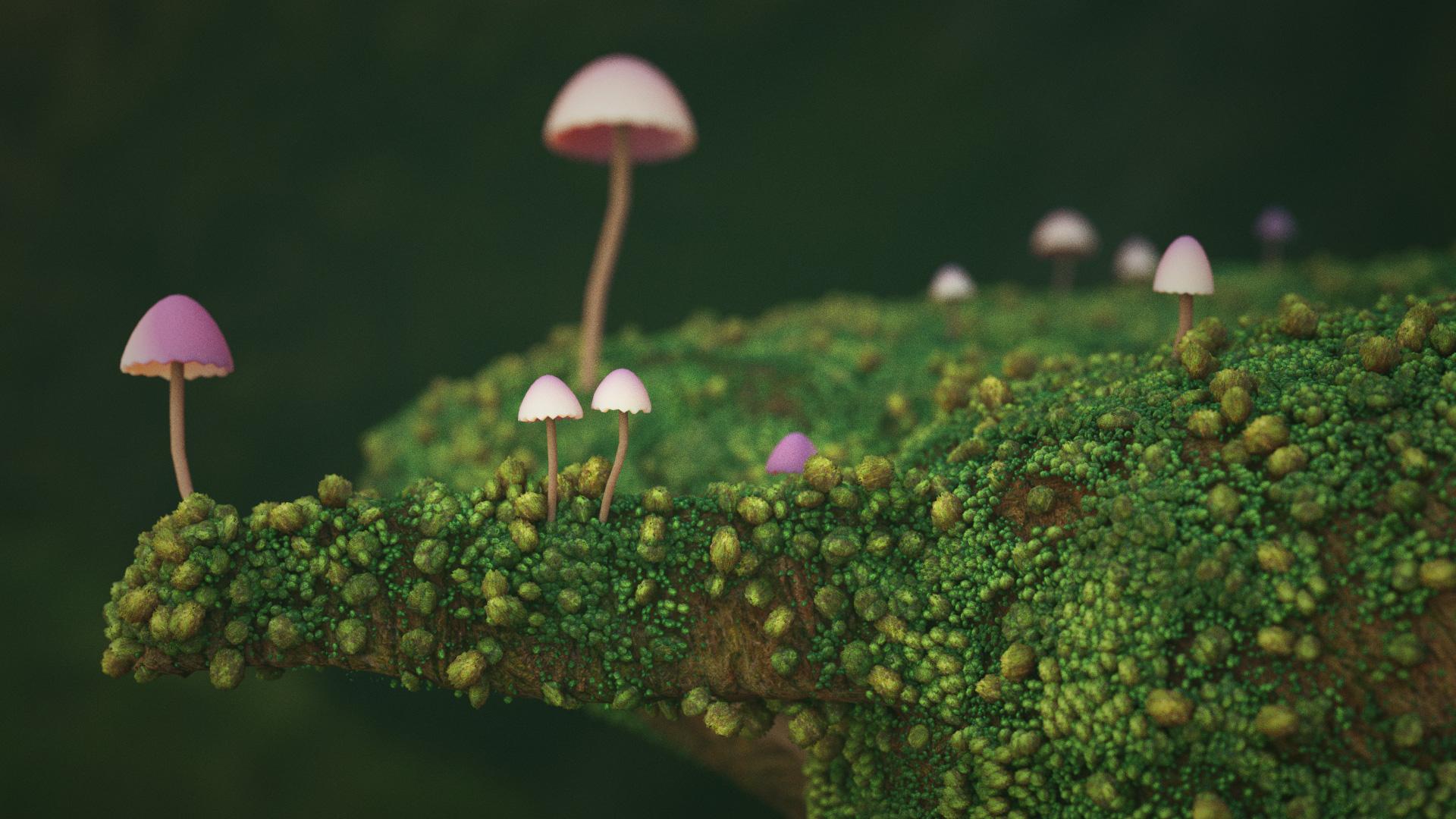 Distesa di muffa ricopre pezzo di legno alcuni funghi rosa cresciuti sopra